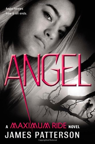 031603620X : Angel: A Maximum Ride Novel (Maximum Ride: The Protectors)