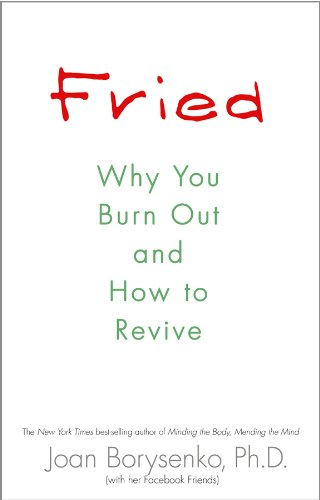 1401925502 : Fried: Why You Burn Out and How to Revive